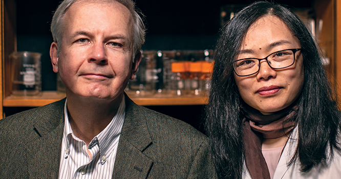 Mimicking the Placental Barrier